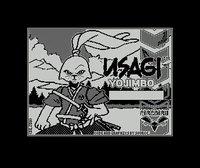 Samurai Warrior: The Battles of Usagi Yojimbo screenshot, image №757092 - RAWG