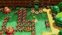 The Legend of Zelda: Link's Awakening screenshot, image №1837496 - RAWG