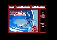 Cкриншот Professional Ski Simulator, изображение № 743600 - RAWG
