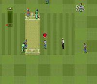 Super International Cricket screenshot, image №762857 - RAWG