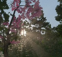Cкриншот FukuStalker 1: Sakura in Fukushima, изображение № 2375384 - RAWG
