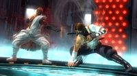 DEAD OR ALIVE 5 Last Round: Core Fighters screenshot, image №31043 - RAWG
