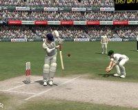 Cкриншот Cricket 07, изображение № 465375 - RAWG