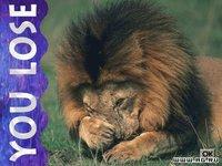 Cкриншот Lion, изображение № 337454 - RAWG
