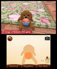 nintendogs + cats: Golden Retriever & New Friends screenshot, image №259722 - RAWG