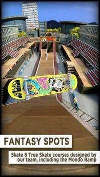 Cкриншот True Skate, изображение № 672364 - RAWG