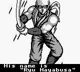 Cкриншот Ninja Gaiden Shadow, изображение № 751711 - RAWG