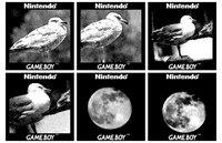 Cкриншот Game Boy Camera, изображение № 1643965 - RAWG