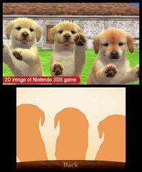 nintendogs + cats: Golden Retriever & New Friends screenshot, image №259715 - RAWG