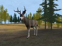 Cкриншот Deer Hunter 2004, изображение № 356742 - RAWG