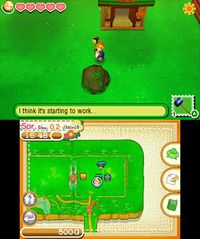 Cкриншот Story of Seasons, изображение № 264443 - RAWG