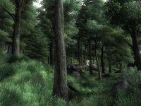 Cкриншот The Elder Scrolls IV: Oblivion, изображение № 699221 - RAWG