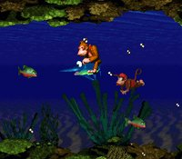 Donkey Kong Country screenshot, image №265697 - RAWG