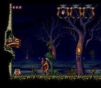 Demon's Crest (1994) screenshot, image №761478 - RAWG