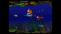 Donkey Kong Country screenshot, image №797923 - RAWG