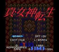 Shin Megami Tensei screenshot, image №740213 - RAWG