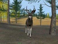 Cкриншот Deer Hunter 2004, изображение № 356745 - RAWG