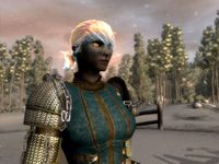 Cкриншот Neverwinter Nights 2: Маска предательства, изображение № 474727 - RAWG