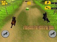 Cкриншот Crazy Horse Racing Champion, изображение № 2185257 - RAWG
