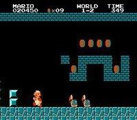 Cкриншот Super Mario Bros., изображение № 260430 - RAWG