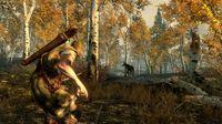The Elder Scrolls V: Skyrim screenshot, image №118311 - RAWG