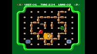 Cкриншот Arcade Archives CLU CLU LAND, изображение № 2235642 - RAWG