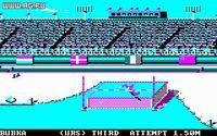 Cкриншот Summer Games 2, изображение № 345157 - RAWG