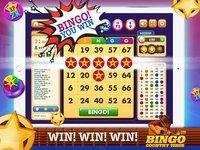 Cкриншот Bingo Country Vibes, изображение № 1857902 - RAWG
