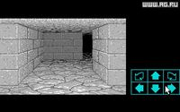 Dungeon Master screenshot, image №289201 - RAWG