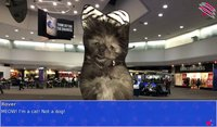 Cкриншот Cat President ~A More Purrfect Union~, изображение № 152362 - RAWG