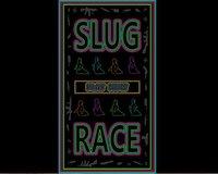 Cкриншот Slug Race!, изображение № 1095536 - RAWG