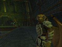 EverQuest II: Kingdom of Sky screenshot, image №443794 - RAWG