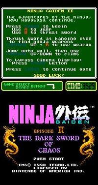 Cкриншот Ninja Gaiden II: The Dark Sword of Chaos (1990), изображение № 737120 - RAWG