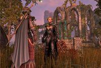 Cкриншот The Elder Scrolls Online, изображение № 593856 - RAWG