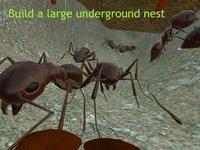 Ant Simulation 3D screenshot, image №937446 - RAWG