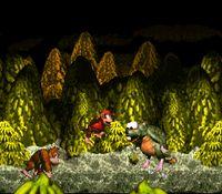 Donkey Kong Country screenshot, image №265698 - RAWG