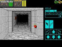 Dungeon Master screenshot, image №289199 - RAWG