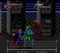 The Death and Return of Superman screenshot, image №761471 - RAWG