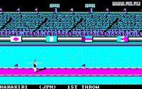 Cкриншот Summer Games 2, изображение № 345162 - RAWG