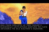 Cкриншот Bruce Lee: Return of the Legend, изображение № 731072 - RAWG