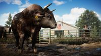 Far Cry 5 screenshot, image №239851 - RAWG
