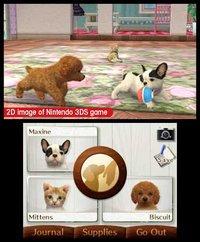 nintendogs + cats: Golden Retriever & New Friends screenshot, image №259725 - RAWG