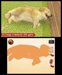 nintendogs + cats: Golden Retriever & New Friends screenshot, image №259720 - RAWG