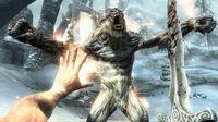 The Elder Scrolls V: Skyrim screenshot, image №118316 - RAWG