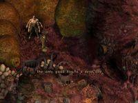 Cкриншот Шизариум, изображение № 219525 - RAWG