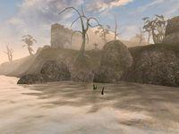 The Elder Scrolls III: Morrowind screenshot, image №119025 - RAWG