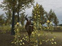 Cкриншот Deer Hunter 2004, изображение № 356746 - RAWG