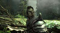The Elder Scrolls V: Skyrim screenshot, image №118318 - RAWG