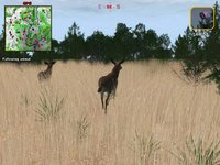 Cкриншот Deer Hunter 2004, изображение № 356752 - RAWG