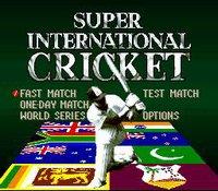 Super International Cricket screenshot, image №762851 - RAWG